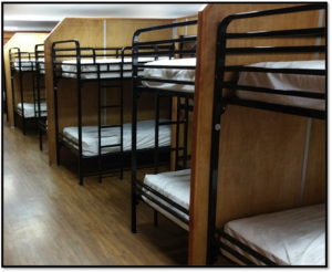 Queen Size Bunk Beds For Adults Ess Universal