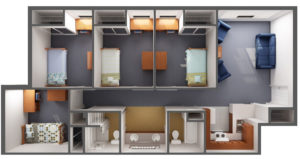 Beds Or Bunk Beds For Campus Ess Universal