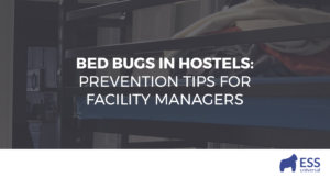 Bed Bugs in Hostels: Prevention Tips for Facility Managers
